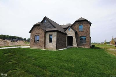 Shelby Twp Single Family Home For Sale: 54679 Deadwood Lane #Lot 54