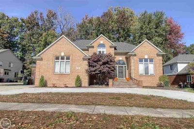 Shelby Twp Single Family Home For Sale: 14811 Towering Oaks