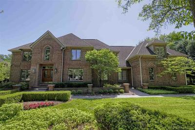 Clinton Twp Single Family Home For Sale: 19910 Westchester Dr.