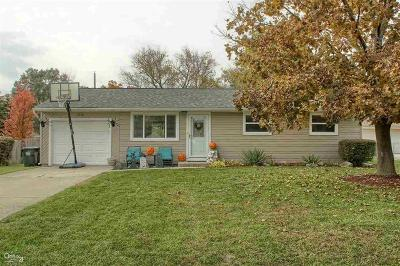 Rochester Hills Single Family Home For Sale: 3120 Longview
