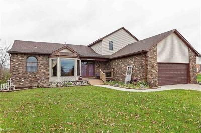 STERLING HEIGHTS Single Family Home For Sale: 4445 18 1/2 Mile Road