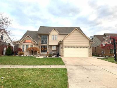 Macomb Twp Single Family Home For Sale: 20299 Windemere Dr
