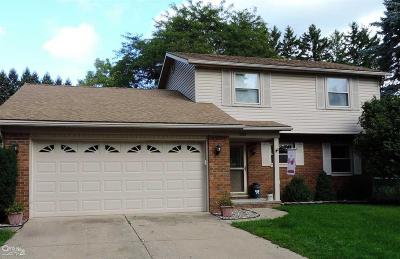 TROY Single Family Home For Sale: 200 Florence