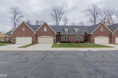 Clinton Twp Condo/Townhouse For Sale: 41032 Harvest Lane #Unit#22