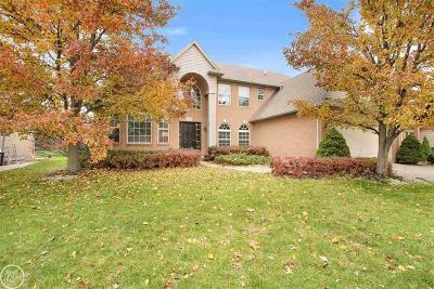 MACOMB Single Family Home For Sale: 21485 Waverly