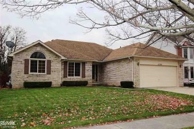 MACOMB Single Family Home For Sale: 24050 Keyway