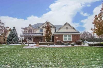 Sterling Heights Single Family Home For Sale: 42489 Willsharon