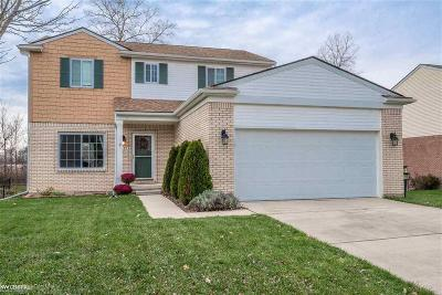 Chesterfield Twp Single Family Home For Sale: 51197 Caroline