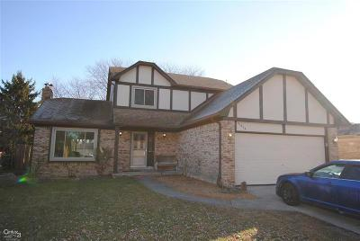 Chesterfield Twp Single Family Home For Sale: 51806 Mitchell
