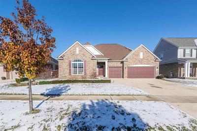 Clinton Twp Single Family Home For Sale: 17543 Merganser