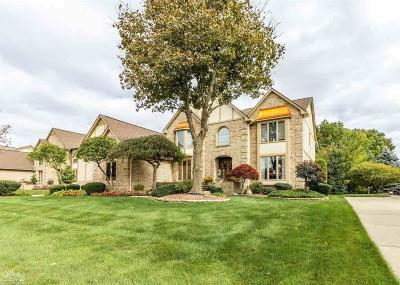 Macomb County Single Family Home For Sale: 54538 Ridgeview