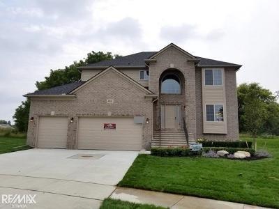Macomb Twp Single Family Home For Sale: 49020 Appaloosa Drive