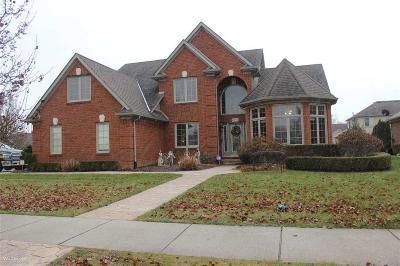 Washington Twp Single Family Home For Sale: 8670 Lillian Dr