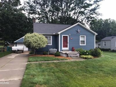Macomb Twp Single Family Home For Sale: 45425 North Branch