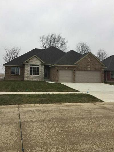 Macomb Twp Single Family Home For Sale: 19613 Madrone
