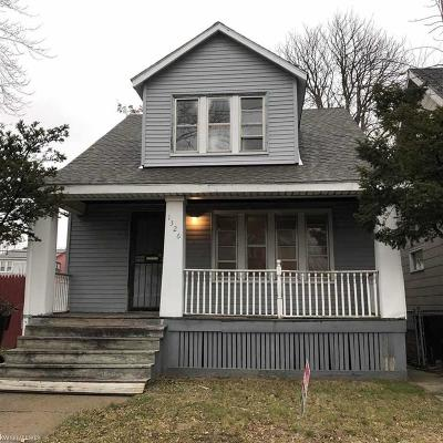 Detroit Single Family Home For Sale: 1326 Alter Road