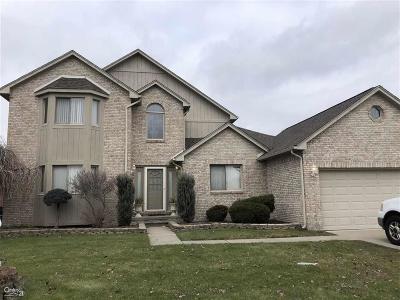 Macomb Twp Single Family Home For Sale: 20259 Balmoral
