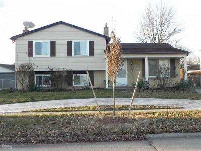 Shelby Twp, Utica, Sterling Heights Single Family Home For Sale: 5150 Franklin Park
