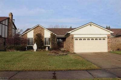 Macomb Twp Single Family Home For Sale: 15633 Winterpark Dr