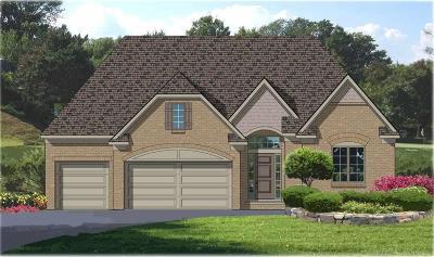 Macomb Twp Single Family Home For Sale: 49341 Appaloosa Drive #18m