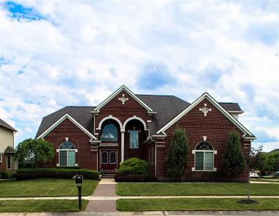 Macomb Twp Single Family Home For Sale: 15880 Hyacinth