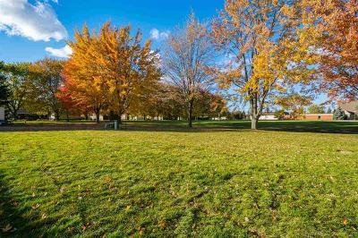 Sterling Heights Residential Lots & Land For Sale: 15139 Marco Ct.