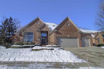 Clinton Twp Single Family Home For Sale: 42855 Tonquish Drive #Unit #12