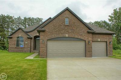 Macomb Twp Single Family Home For Sale: 50736 Summit View Drive #Lot #11