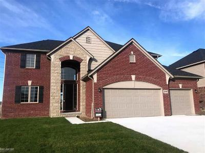Macomb Twp Single Family Home For Sale: 21999 Rivanna