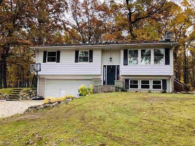 Addison Twp Single Family Home For Sale: 1690 Moffat