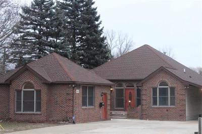 Ann Arbor Single Family Home For Sale: 570 N Maple Rd