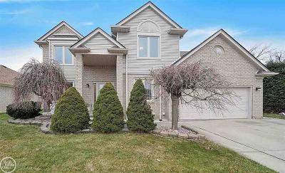 Macomb Twp Single Family Home For Sale: 51740 Blue Spruce