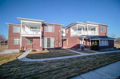 Washington Twp Condo/Townhouse For Sale: 7006 Boulder Pointe Drive #96/16