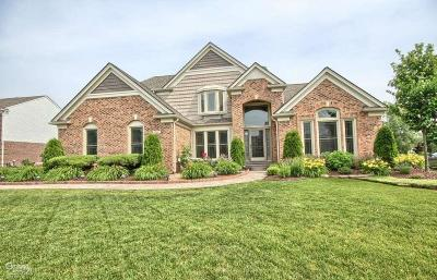 Canton, Canton Twp Single Family Home For Sale: 47952 Picadilly