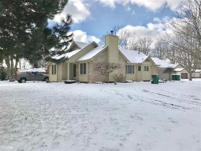 Harrison Twp Single Family Home For Sale: 36989 Jefferson