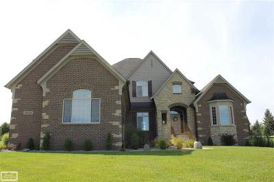 Bruce Twp Single Family Home For Sale: 69244 Lake Point Lane