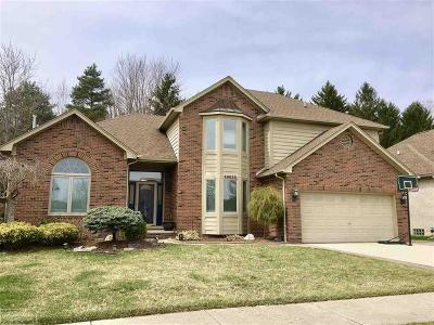Macomb Twp Single Family Home For Sale: 49033 Deerfield