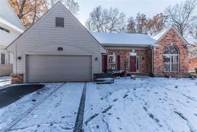 West Bloomfield Single Family Home For Sale: 6179 Mission