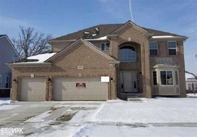 Macomb Twp Single Family Home For Sale: 49421 Mustang