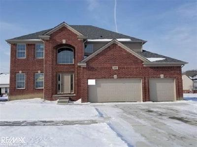 Macomb Twp Single Family Home For Sale: 49469 Mustang