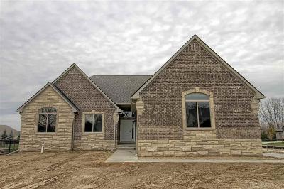 New Baltimore Single Family Home For Sale: 37711 Sienna Oaks Dr #Lot # 3