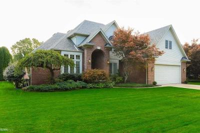 Harrison Twp Single Family Home For Sale: 38977 Parkway