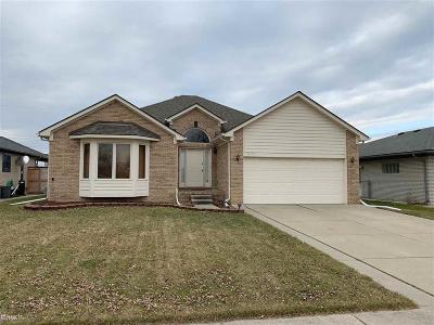 Sterling Heights Single Family Home For Sale: 35041 Lana Lane
