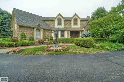 Oakland Twp Single Family Home For Sale: 5423 Orion Road