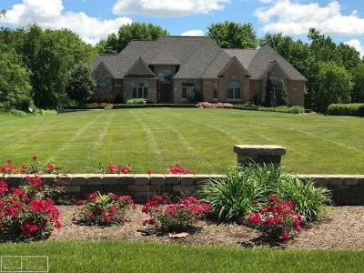 Ray Twp Single Family Home For Sale: 66100 North Avenue