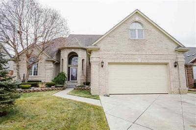 Macomb Twp Single Family Home For Sale: 53926 Carnation Dr