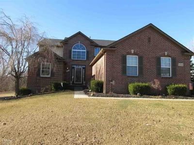 Rochester Single Family Home For Sale: 2834 Long Meadow Ln
