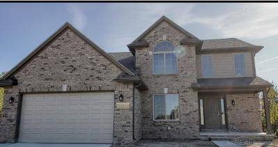 New Baltimore Single Family Home For Sale: 37657 Sienna Oaks Dr #Lot # 1