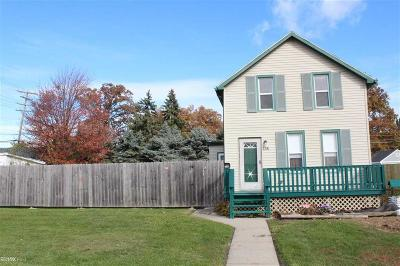 Oakland County, Macomb County Single Family Home For Sale: 234 Hubbard
