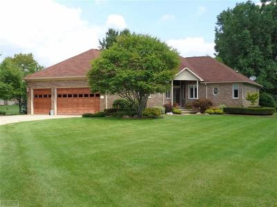 Macomb County Single Family Home For Sale: 11157 Marino Drive